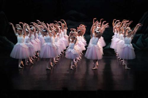 Dartfod-2012-corps-swans-Act-2-Waltz-Start