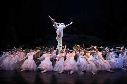 Dartford-2012-Act-2-high-lift-circle-of-swans-(press)